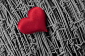 Heart over a barbed wire — Stock Photo