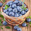 Basket of Blueberries — Stock Photo