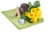 Yellow Flowers with Garden Tools — Stock Photo
