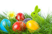Easter Bunny with Easter Eggs on Green Grass — Stock Photo