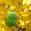 Easter egg hanging on a branch with yellow flowers — Stock Photo #43268745
