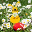 Easter Bunny with Easter Egg on the Flowers Field — Stock Photo #43637735