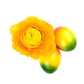 Flower and Easter Eggs — Stock Photo