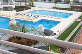 Seagulls sitting in front of the balcony — Stock Photo