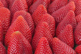 Strawberries in close up — Stock Photo
