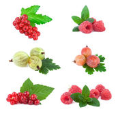 Set of fresh Berry with Leaf — Stock Photo