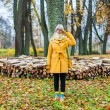 Autumn has come — Stock Photo