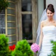 Bride on a wedding day — Stock Photo #18591837