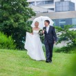 Rainy wedding day — Stock Photo