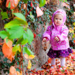 Baby in autumn park — Stock Photo