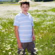 10-years boy in a field of daisies — Stok fotoğraf
