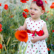 Toddler girl in red poppies — Stock Photo