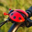 Ladybird - Stock Photo