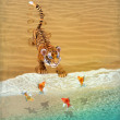 Cute tiger cub playing with goldfish. — Stock Photo