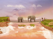 Two elephants on a bridge in the sky — Stock Photo