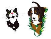 Cat and dog — Zdjęcie stockowe
