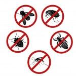 Постер, плакат: No parasites
