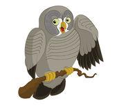 Big Owl — Stockvector