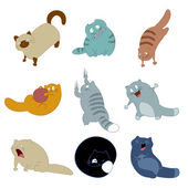 Collection of cat icons — Stock Vector