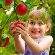 Girl removes the apple from the tree — Stock Photo