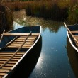Boats are aligned on the shores of a lake — 图库照片