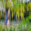 Abstract forest — Stock Photo