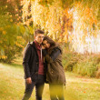图库照片: Couple in autumn park