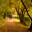 paar in herfst park — Stockfoto