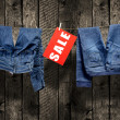 Foto de Stock  : Jeans, sale inscription on clothesline