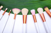 Makeup Brushes on green leaf — Stock Photo
