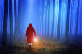 Little Red Riding Hood in the forest — Stock Photo