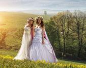 2 krásná nevěsta v přírodě — Stock fotografie