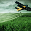 Plane on field — Stock Photo #47077303