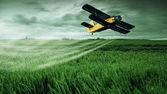 Plane on field — Stock Photo