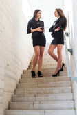 Two pretty businesswoman talks on the stairs — Stock Photo