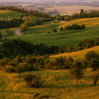Hilly landscape full green — Stock Photo #47951709