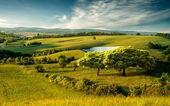 Hilly landscape — Stock Photo