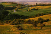 Hilly landscape full green — Stock Photo