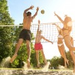 Friends Playing Volleyball On Beach — Stock Photo #49328569
