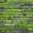 Old stone wall with green moss - Stock Photo