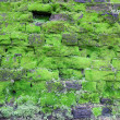 Old stone wall covered green moss - Stock Photo