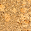 Pressed cork texture background — Stock Photo