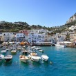 Panorama of sea port, Capri island (Italy) — Stock Photo