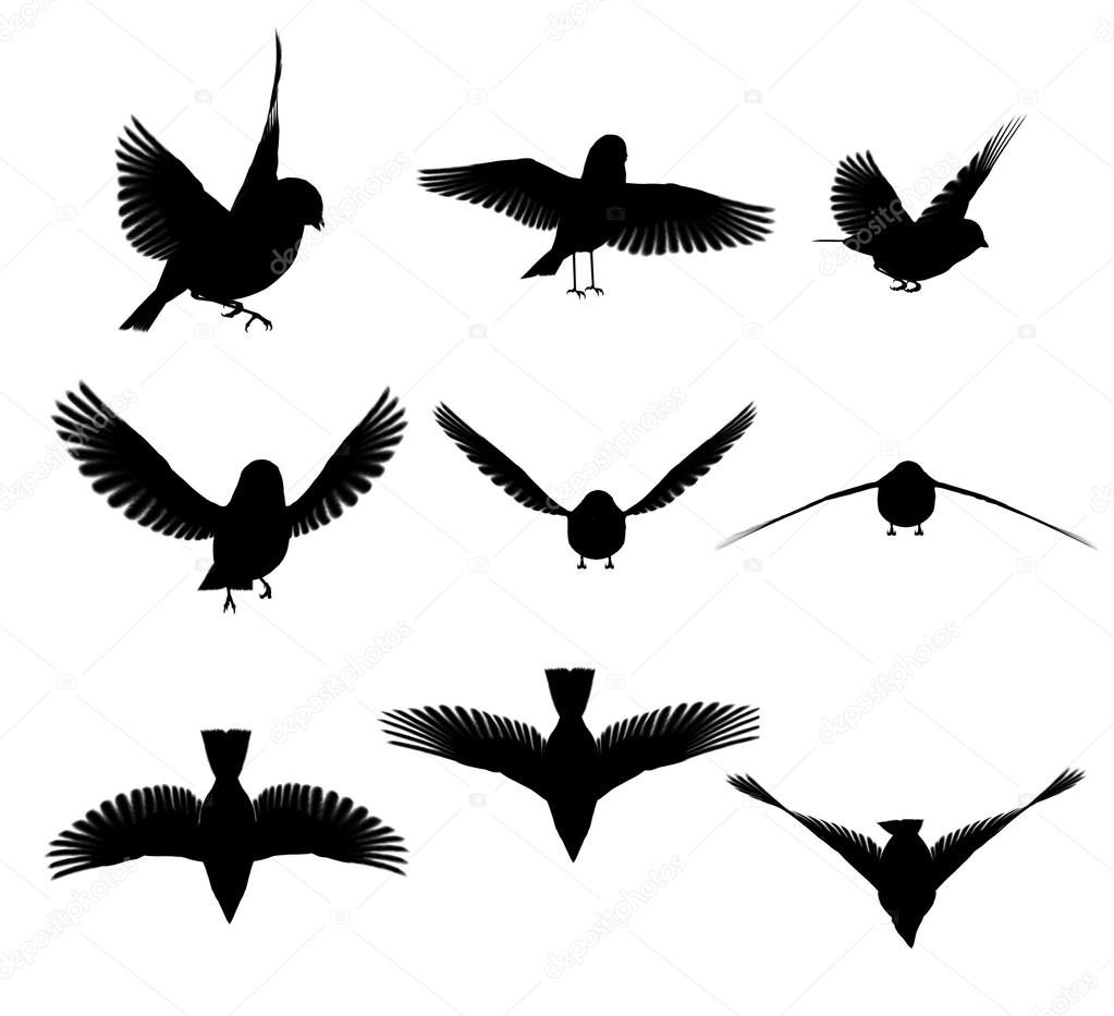 birds in flight silhouette tattoo