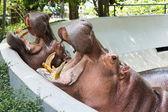Hippopotamus in the zoo — Stock Photo