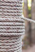 Closeup roll of rope — Stock Photo