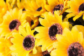 Sunflowers plastic — Stock Photo