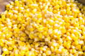 Sweet Corn with Butter — Stock Photo