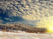 Wonderful winter landscape — Stock Photo