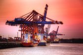 Container Harbor — Foto Stock